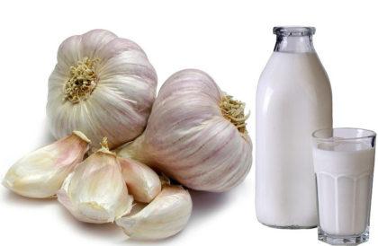 Чеснок в молоке лечит астму, пневмонию, туберкулез, проблемы с сердцем, бессонницу, артрит, кашель и многие другие заболевания!