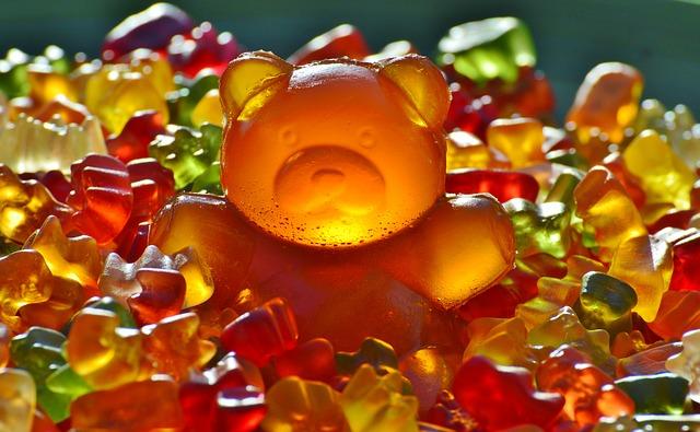 giant-rubber-bear