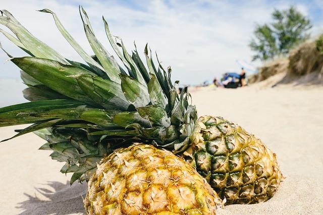 pineapple-1602345_640